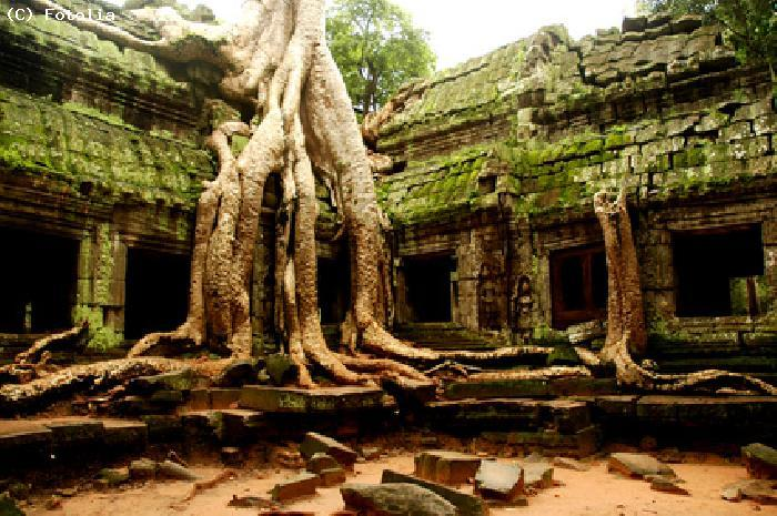 Temple a Siem Reap - Cambodge