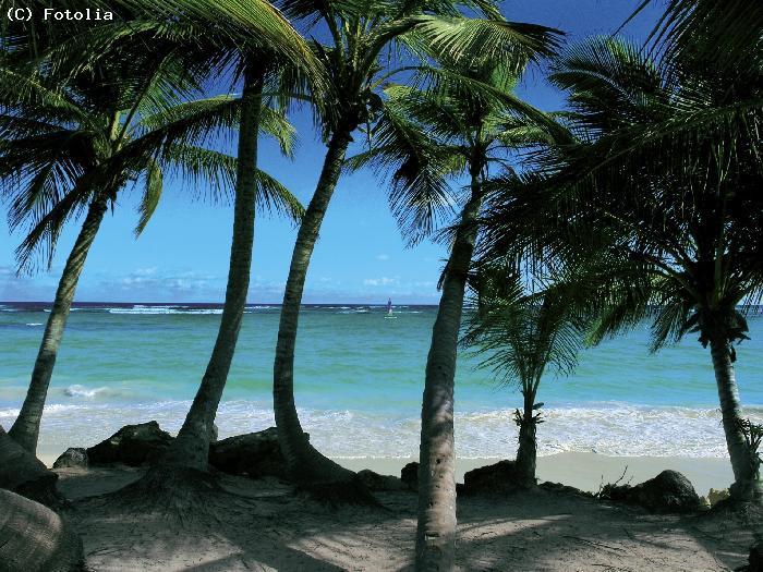 guide touristique haiti