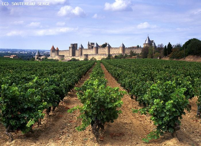 Vignobles - Carcassonne