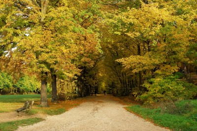 hotel Chatillon