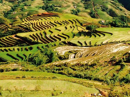 Richesses Mekong