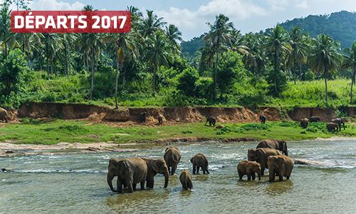Indispensable Lanka