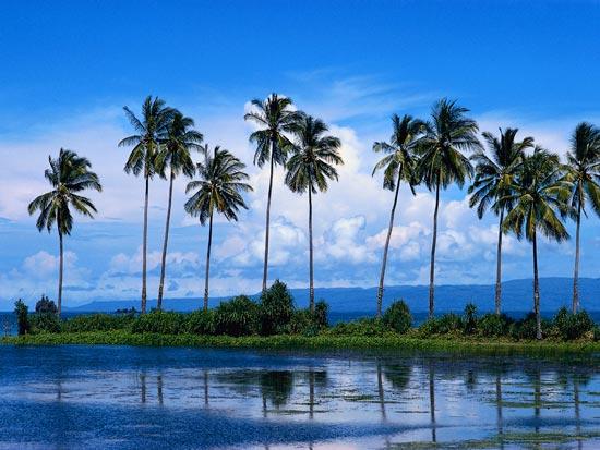 Splendeurs Indonesiennes
