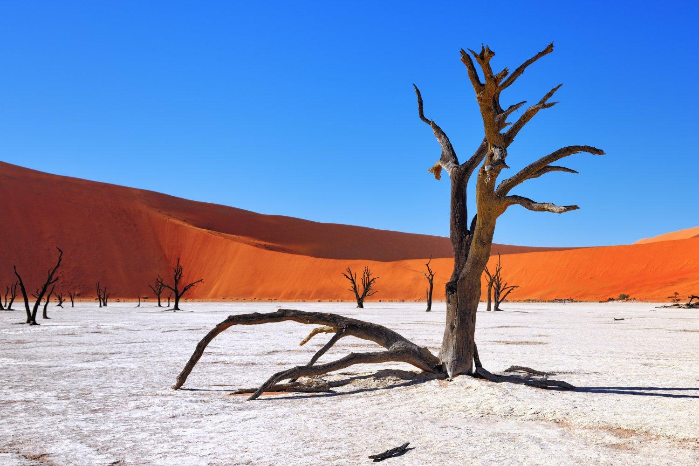 namibie-photos
